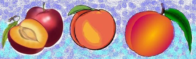 ciruela-nectarina- melo