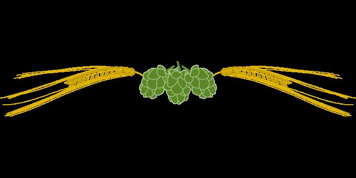 hops-31495