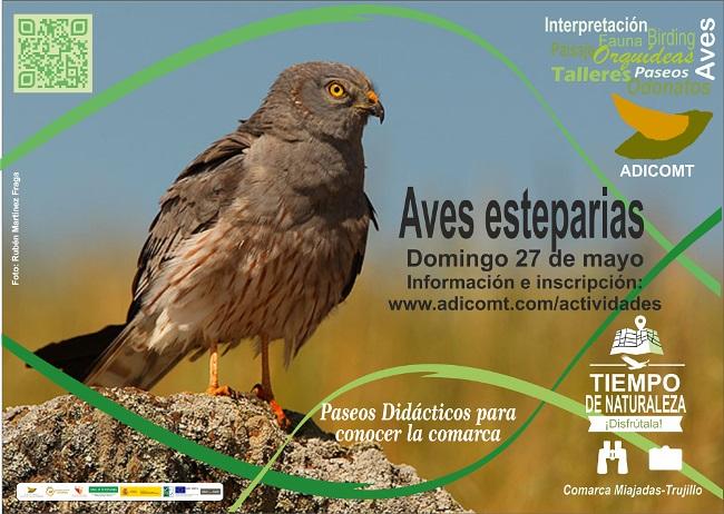 Salida 2 Aves