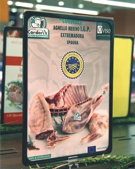 corderex italia