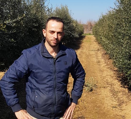 52 olivar secano citytex