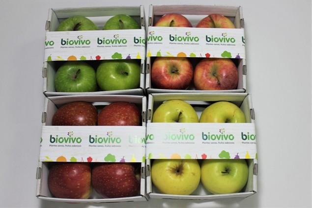 66 manzanas haciendas bio